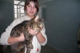 Balbina - kot miesiąca luty 2009